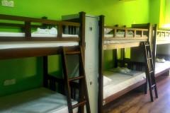 Fat Rhino Hostel