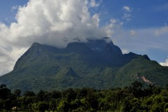 Doi Luang and Chiang Dao Wildlife Sanctuary