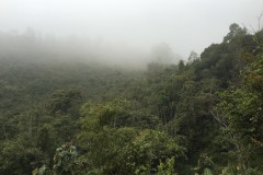 Trekking in Phongsali