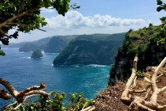 Three Days on Nusa Penida
