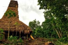 Wee Leo village
