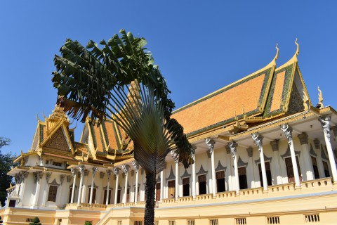Royal Palace and the Silver Pagoda