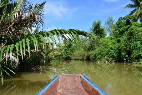 Boat ride in the Tapi river delta