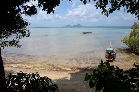 A jungle view of Jungle Beach. Photo taken in or around Beaches on Ko Muk, Ko Muk, Thailand by David Luekens.