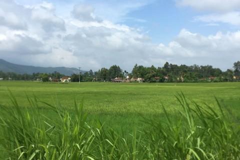 Scenic drive Kon Tum to Quang Ngai or Hoi An