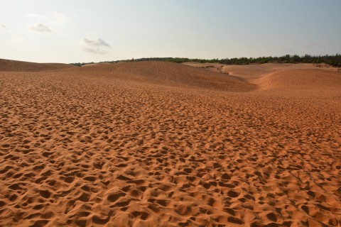 Yes, there is plenty of sand. Photo taken in or around Sand dunes, Mui Ne, Vietnam by Cindy Fan.