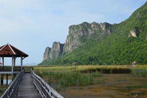 Thung Sam Roi Yot Wetlands