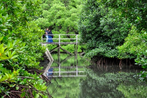 Mangrove Information Centre (Suwung Kawuh)