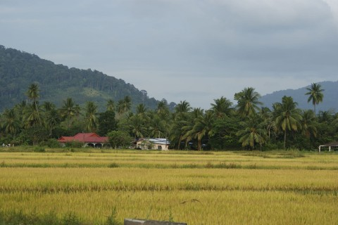 More than just beaches. Photo taken in or around A week in Langkawi, Langkawi, Malaysia by Vanessa Workman.