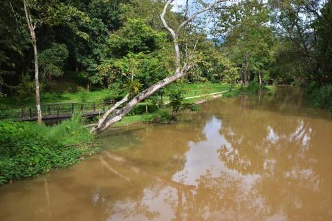 Tham Pla National Park