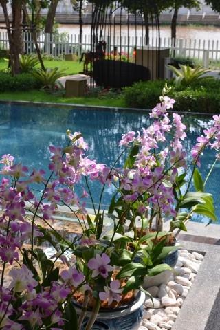 Riverside Floral Inn